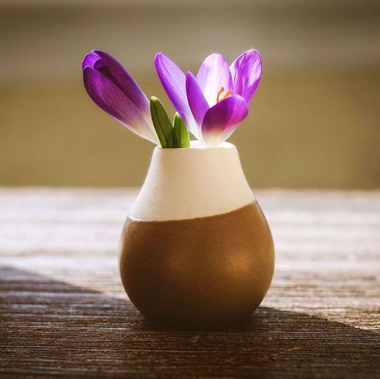 Picture of Flower vase